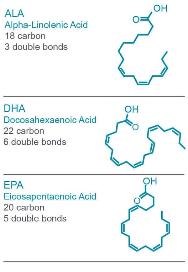 fish oil fullscript supplements