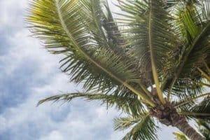Florida-southflorida