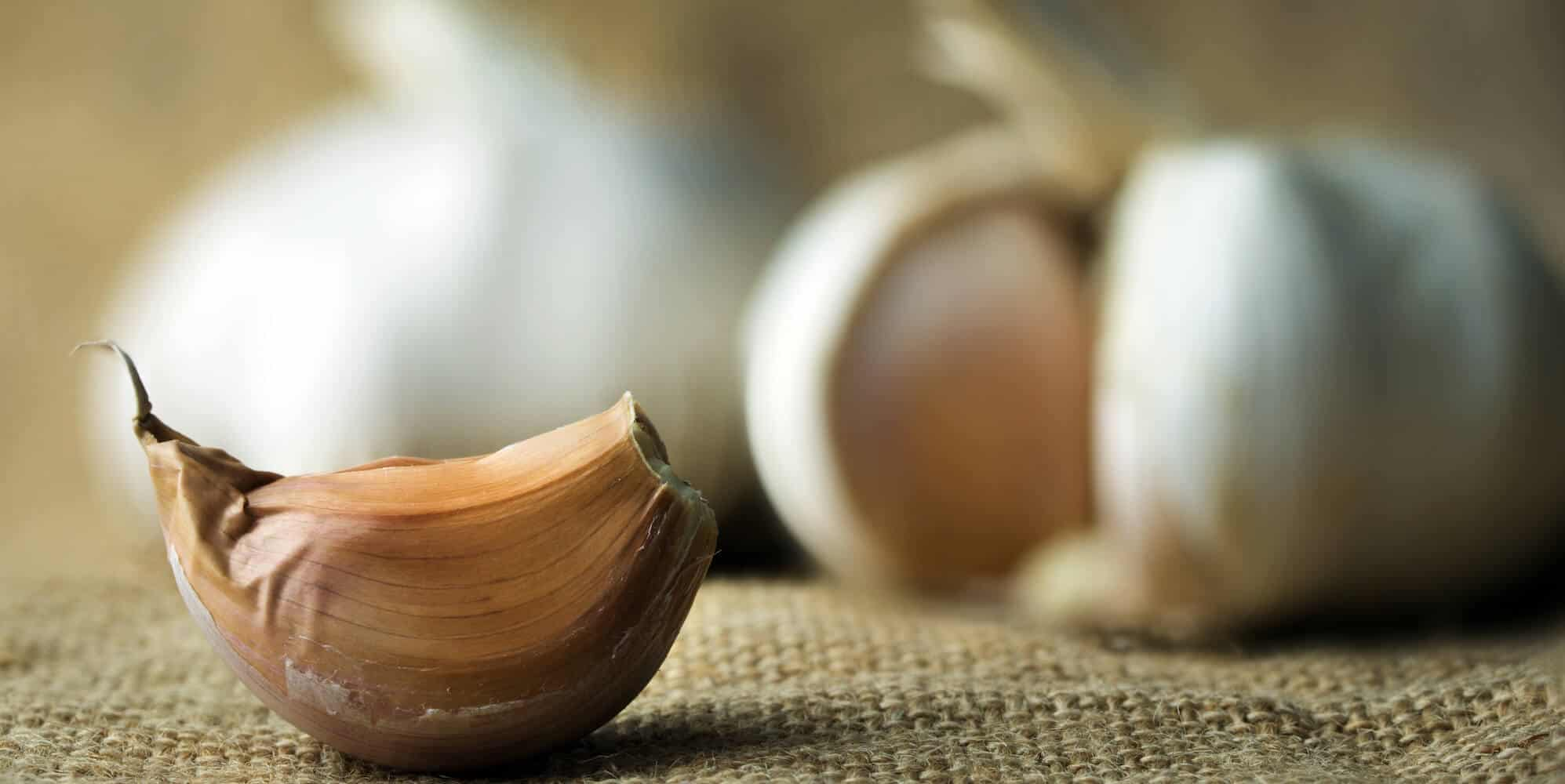 supplements to avoid before surgery - garlic