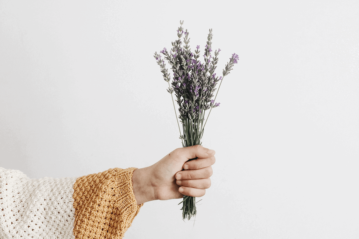 person in a sweater holding a bouquet of lavender