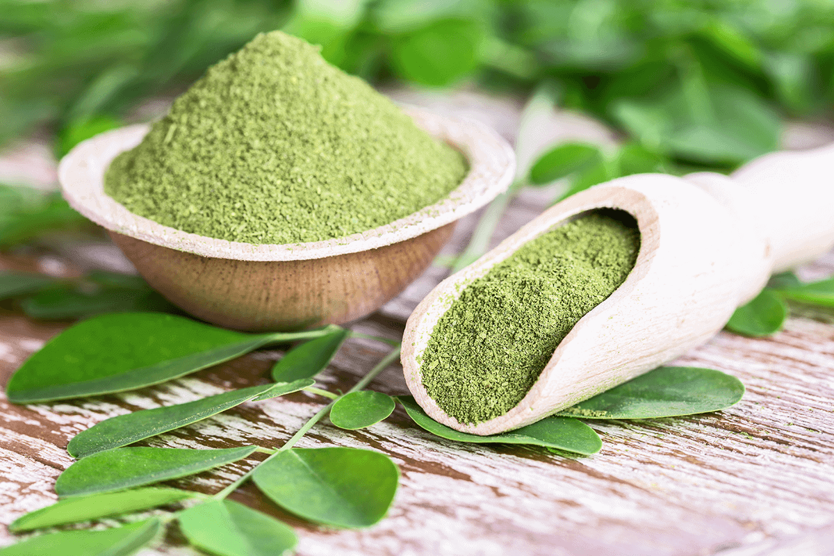 Image of ground moringa