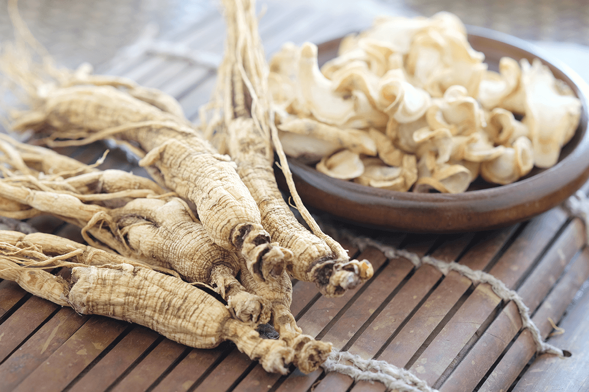 Panax ginseng in plant form, full and cut into pieces