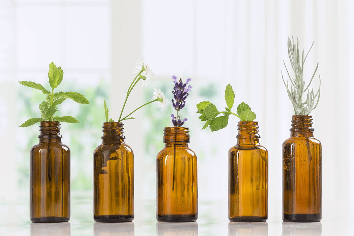 five bottles of essential oils and their corresponding plants