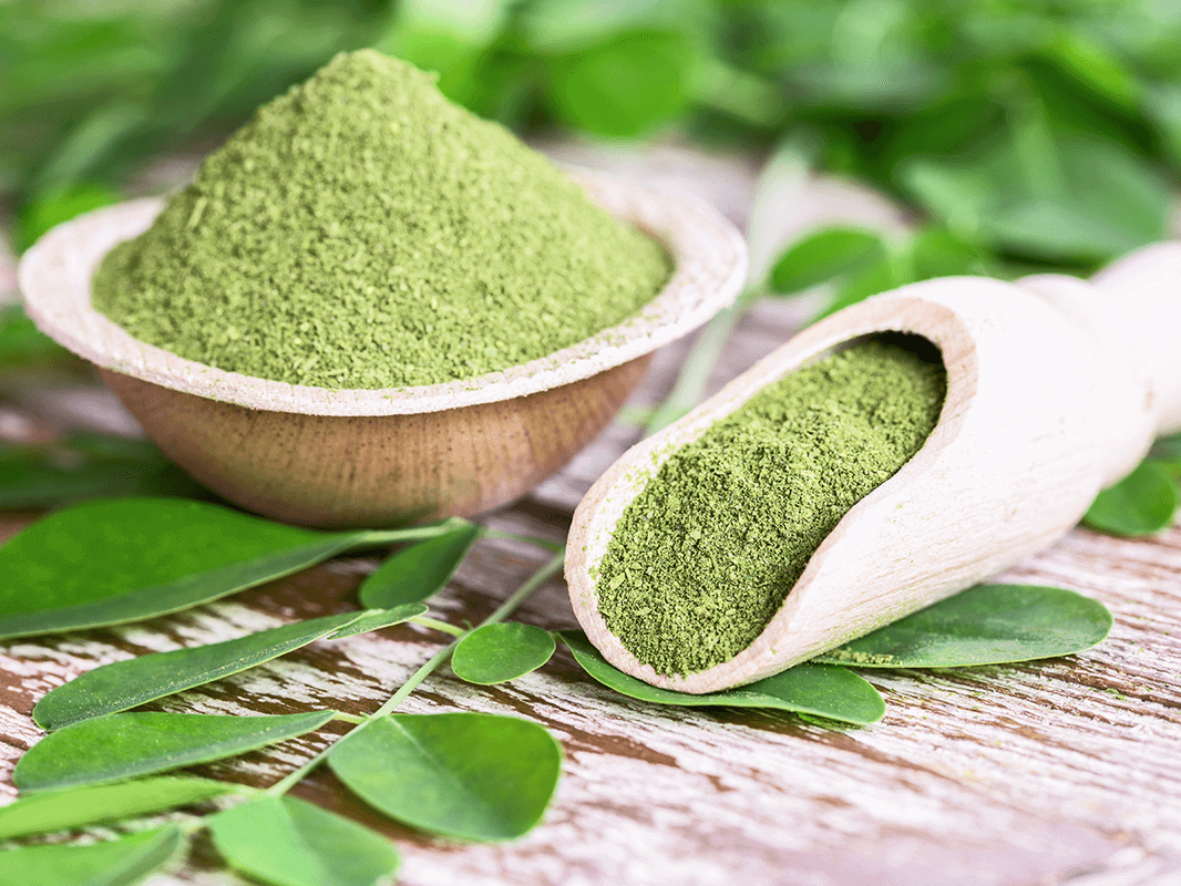 Moringa in powder form in a wooden bowl and in a wooden spoon with plant form surrounding