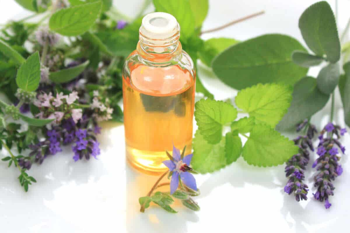 A dropper bottle of essential oil placed against a background of herbs