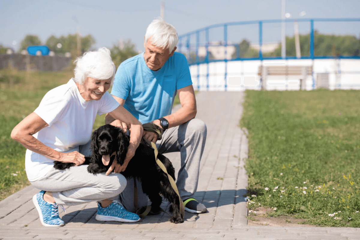 older man and woman walking with dog outdoors