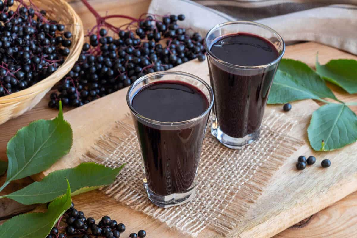 elderberry juice in two glasses with elderberries next to the glasses