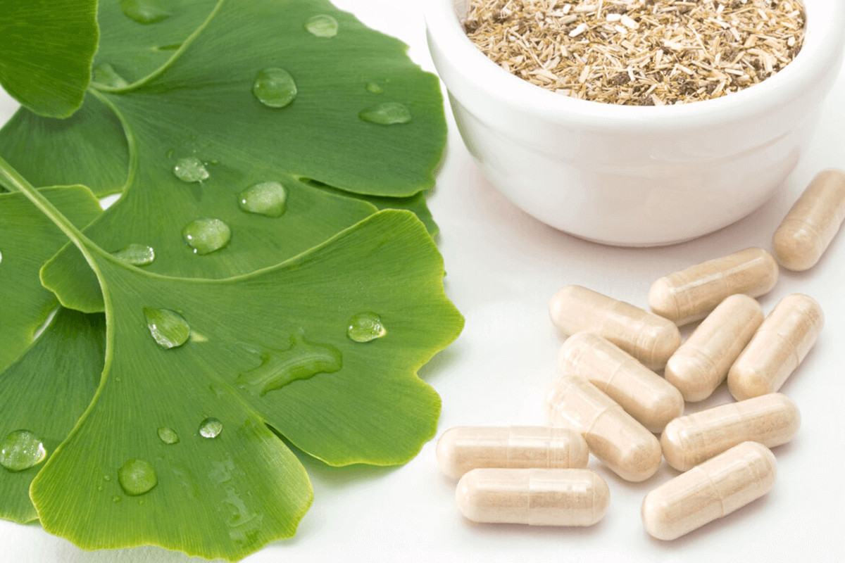 Ginkgo biloba extract in capsules and Ginkgo biloba plant