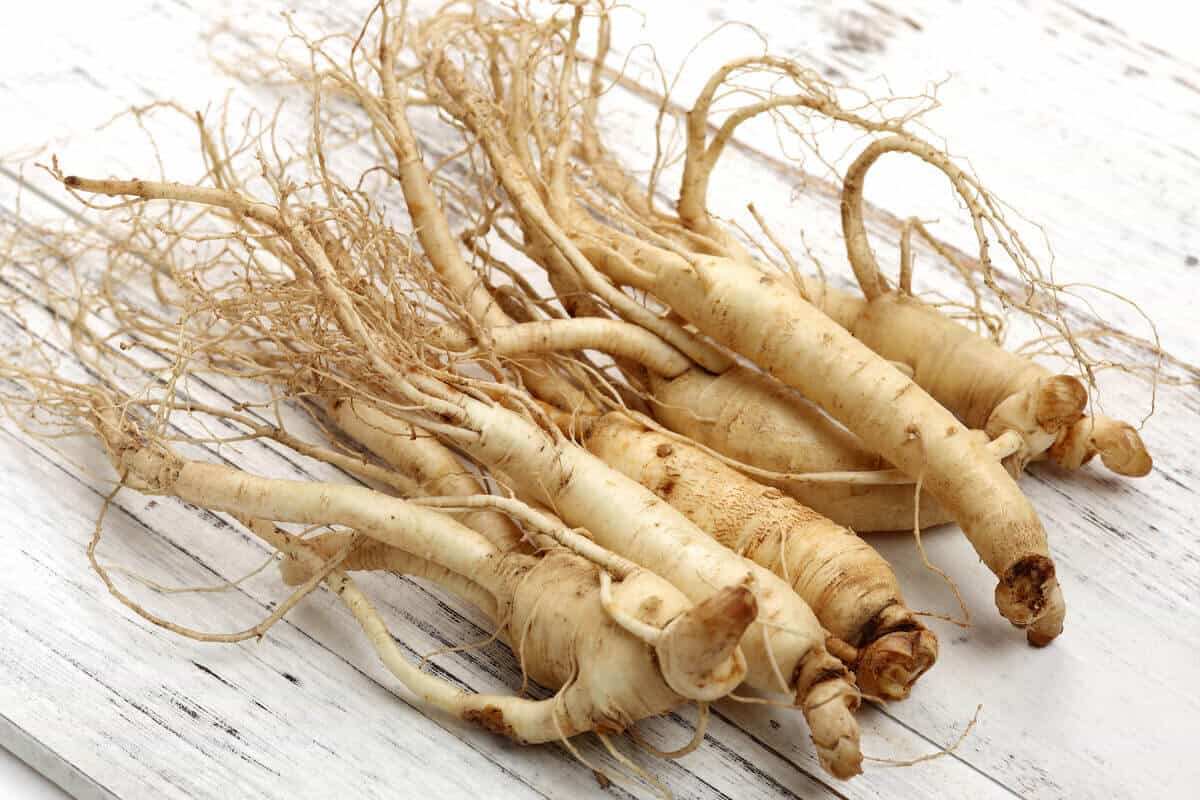 Image of ginseng roots
