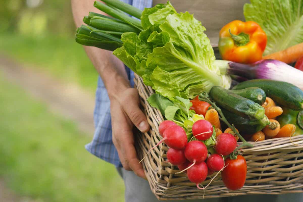 Image of a vegetable basket
