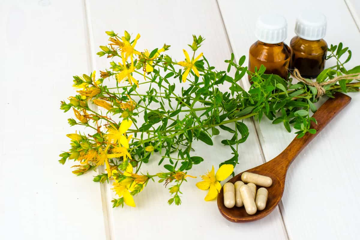 Image of St. Johns Wort