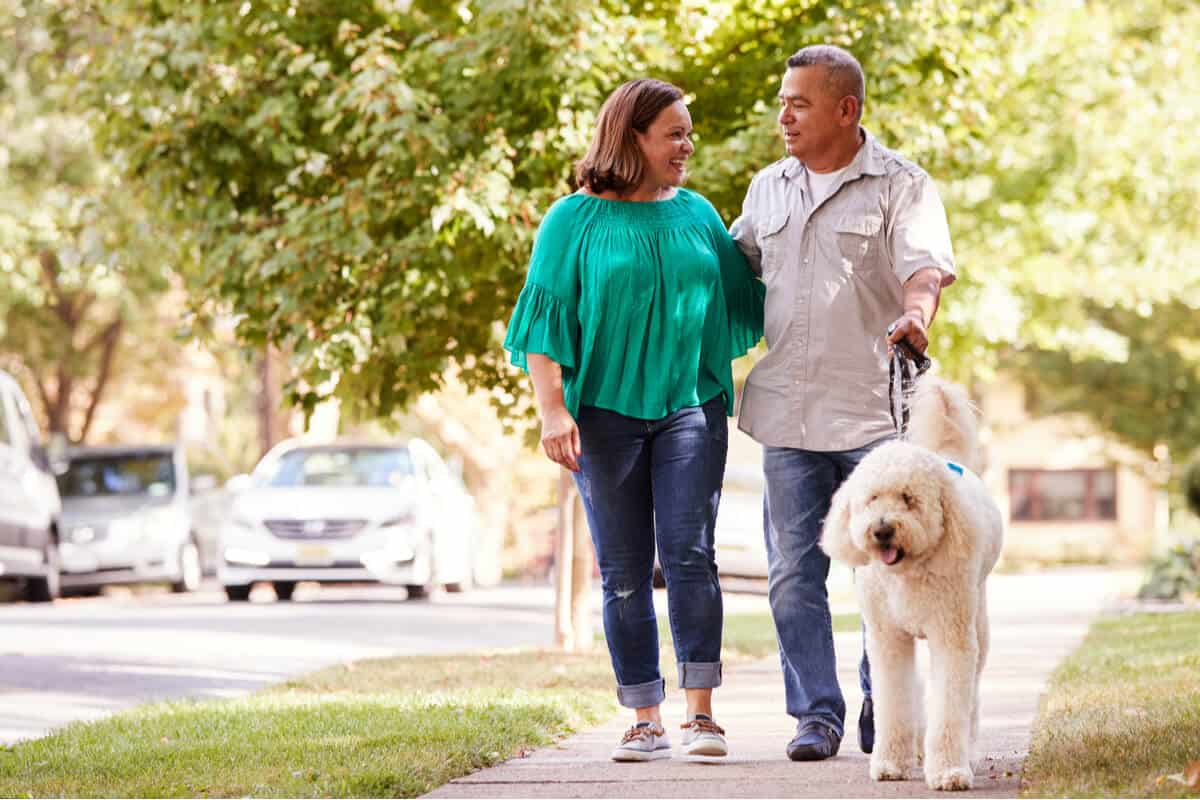 How to improve lung health two people walking a dog