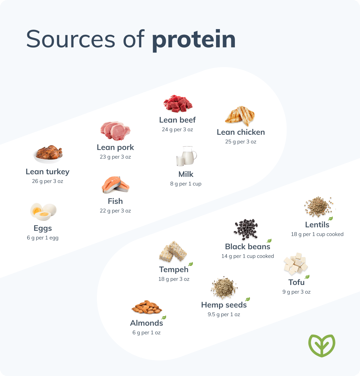 best protein sources meat and plant protein